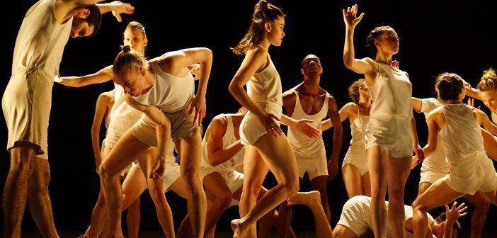 La Batsheva Dance Company : quand l'art n'échappe pas au politique